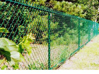 green-chain-link[1].jpg