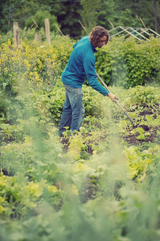 women-who-farm-over-grow-the-system-33.jpg