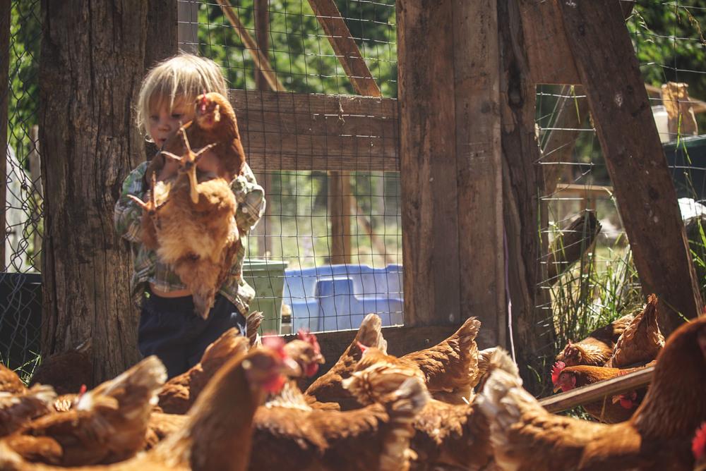 women-who-farm-over-grow-the-system-36.jpg