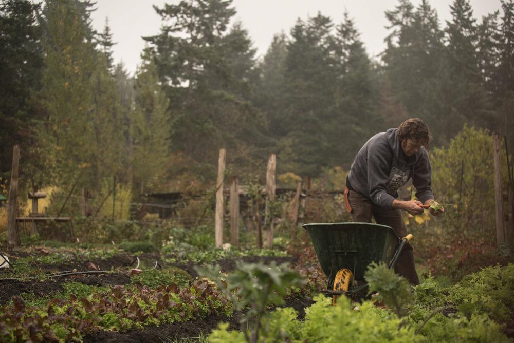 women-who-farm-over-grow-the-system-42.jpg
