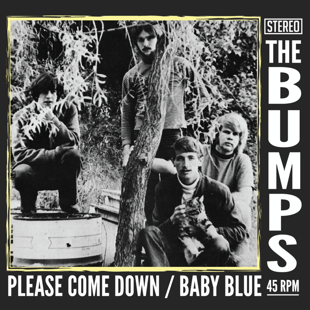Please Come Down / Baby Blue (1967 - Reissued 2017)