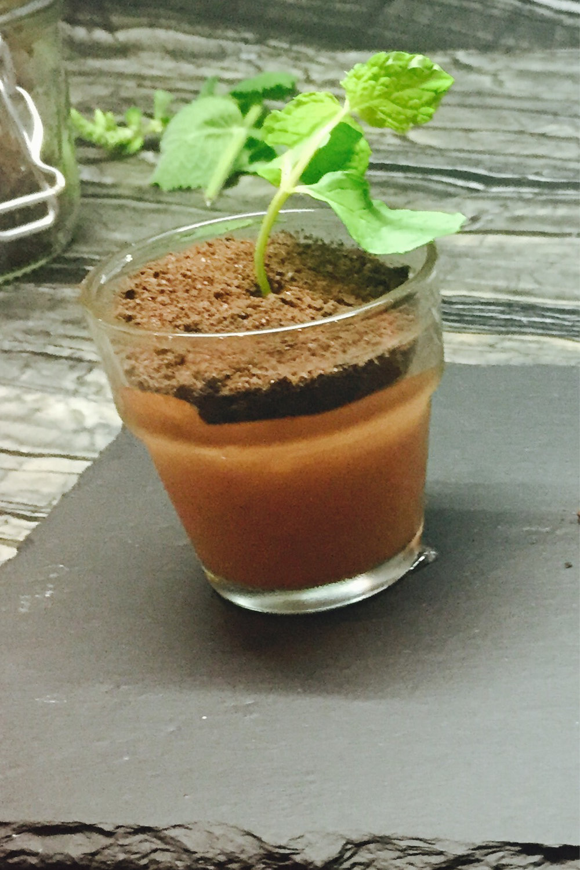 Potted-Plant-Dessert-2.jpg