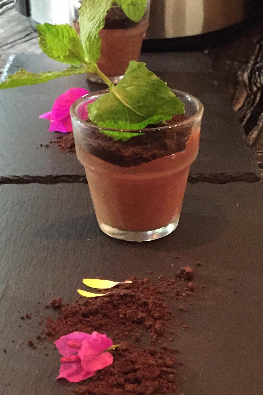 Potted-Plant-Dessert-3.jpg