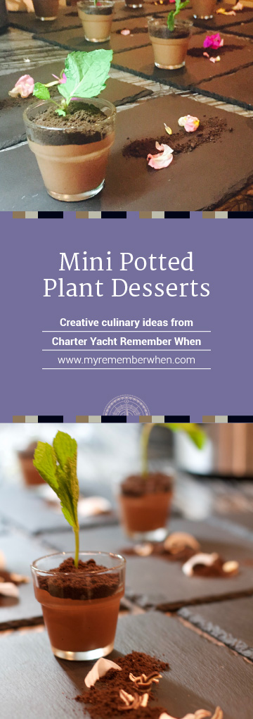 Remember When's Mini Potted Plant Desserts are not only attractive to the eye—they are much more than pretty to look at—Chef Daniela's chocolate mousse will indulge even the most discerning chocolate connoisseurs!