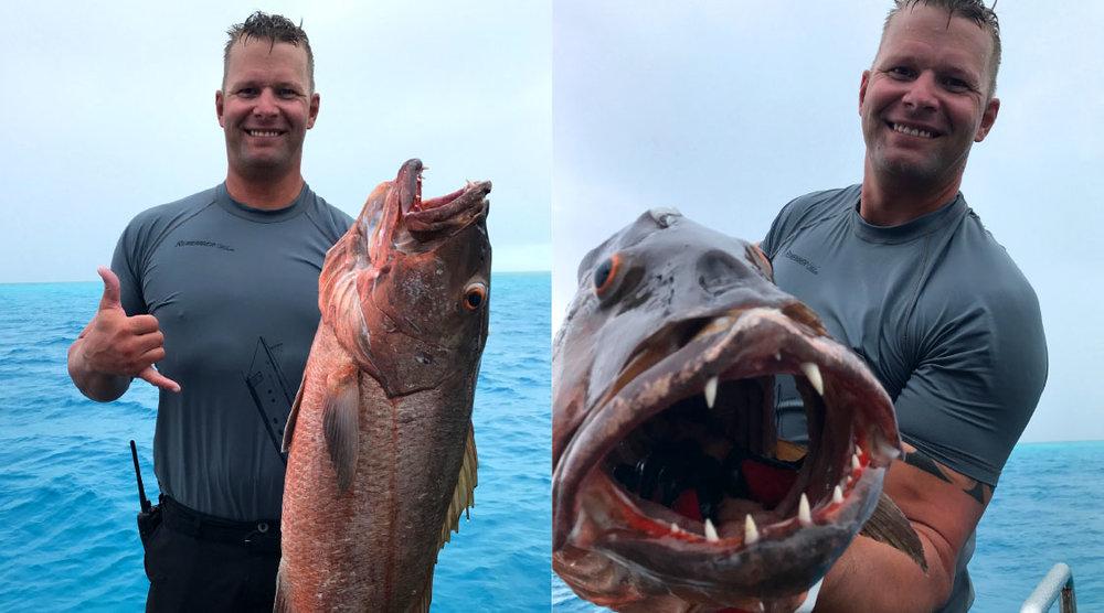 Bahamas-Abacos-Fish-CuberaSnapper.jpg