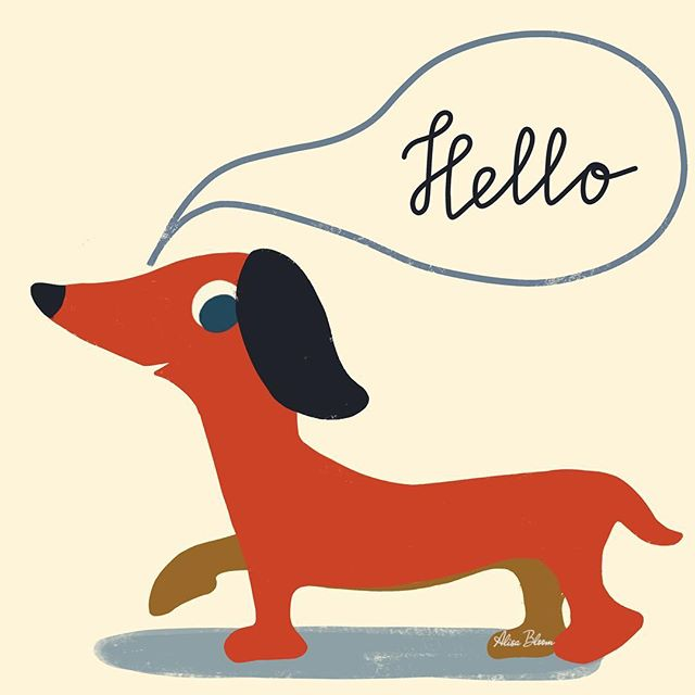 Greetings! Exited to be back. Super belated Happy New Year, friends! I am ready to see what 2019 will bring. . . . . . . #startofanewyear #picturebookillustration #alisabloom #dogillustration #redpup #staycreative #surfacepatterndesigner