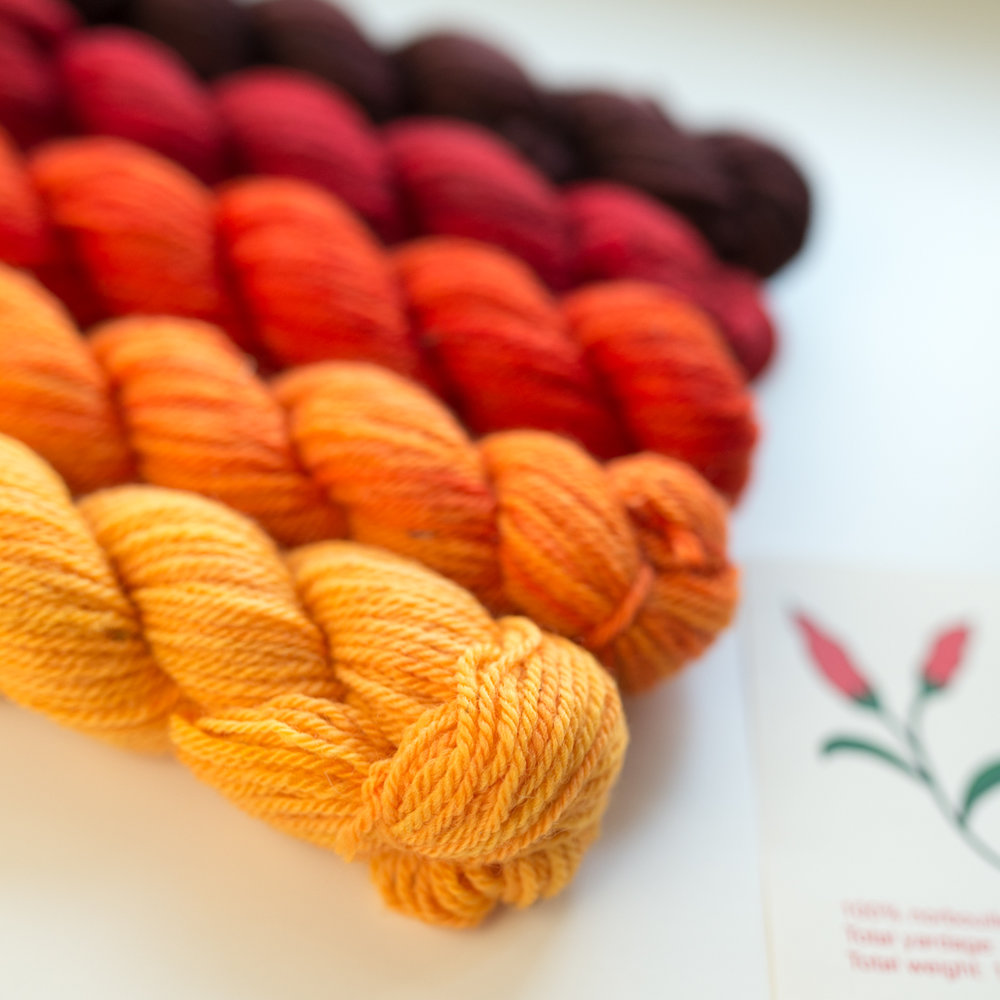 Elora mini skein gradient pack
