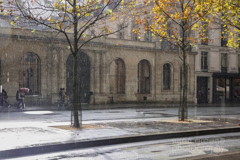 rainy afternoon, paris