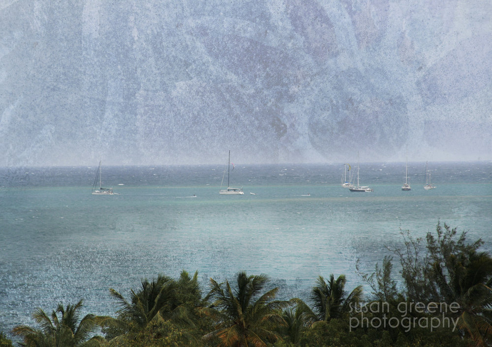 sailboats + flower sun