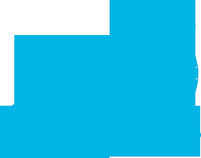 SB Buggie