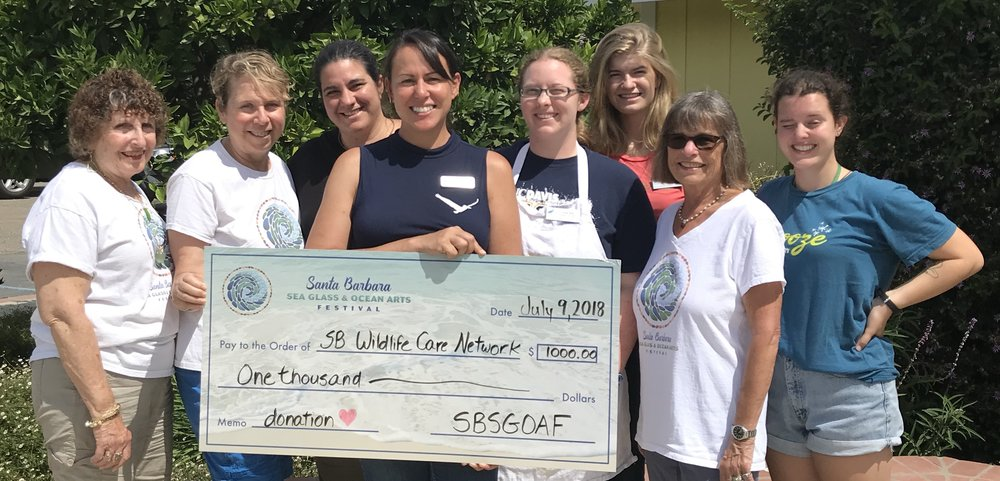 In light of the recent Holiday Fire, The Santa Barbara Sea Glass & Ocean Arts Festival Committee awards the Santa Barbara Wildlife Care Network with $1,000.00 to assist with the impacts of their evacuation and provide them with extra funds to treat animals injured in the fire.