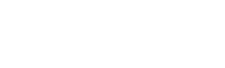 Whole Story Wellness