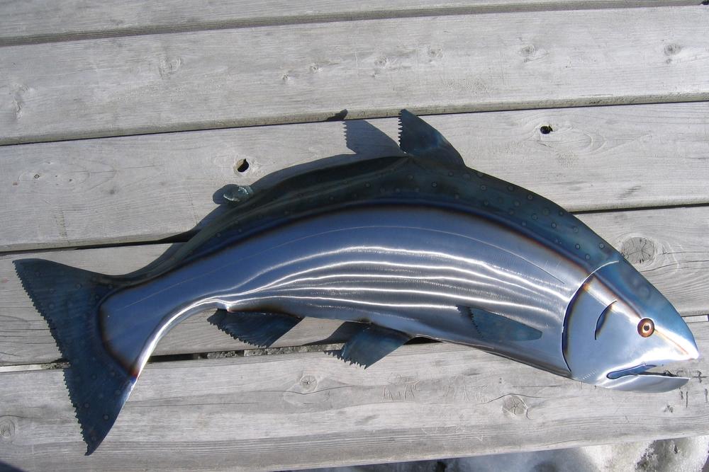 Steel Salmon