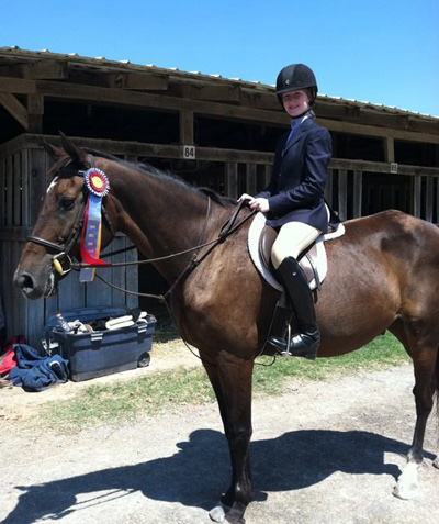 Warmblood Hunter heals fast with Equine Light Therapy after very serious stifle injuries.
