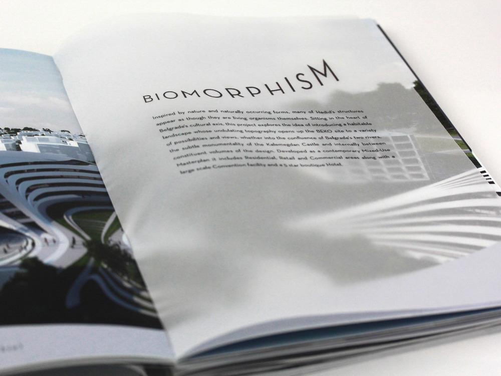 Details-Biomorph.jpg