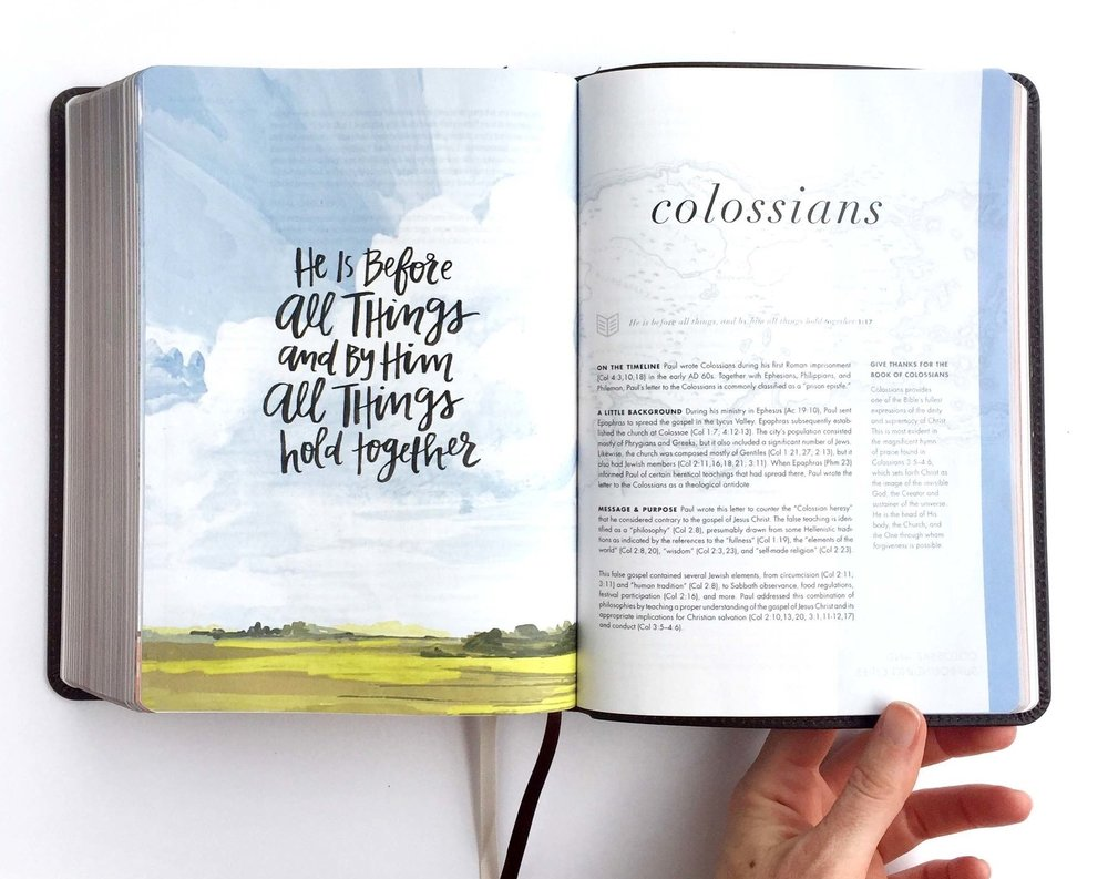 Illustrations for the She Reads Truth Study Bible, 2017.