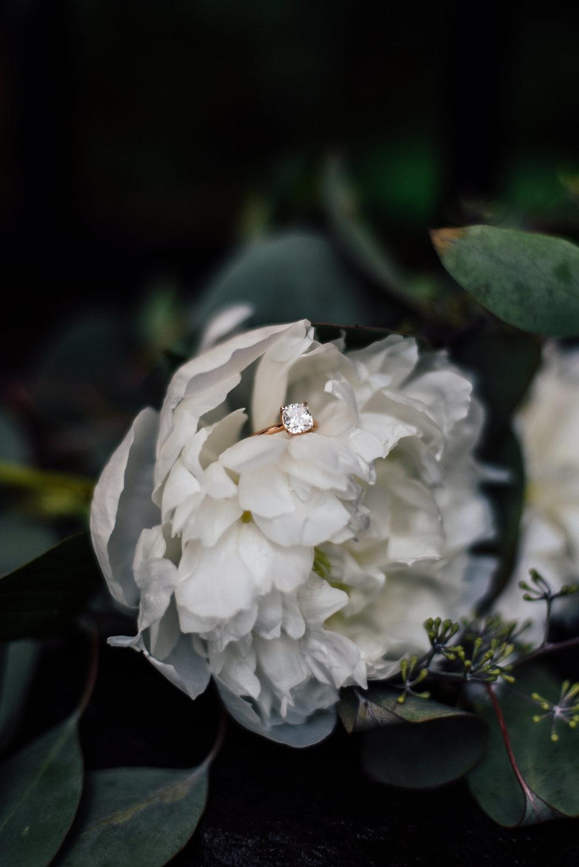 engagement-48.jpg