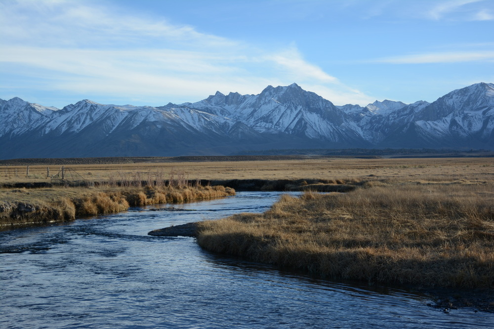 Late winter on the Upper Owens River.