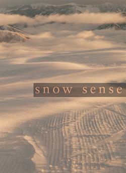 snowsense.jpg