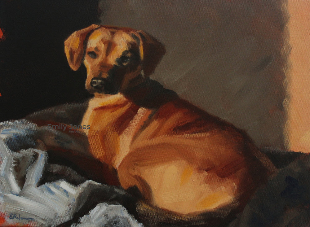 Dog Times  | 2016 | Oil on canvas