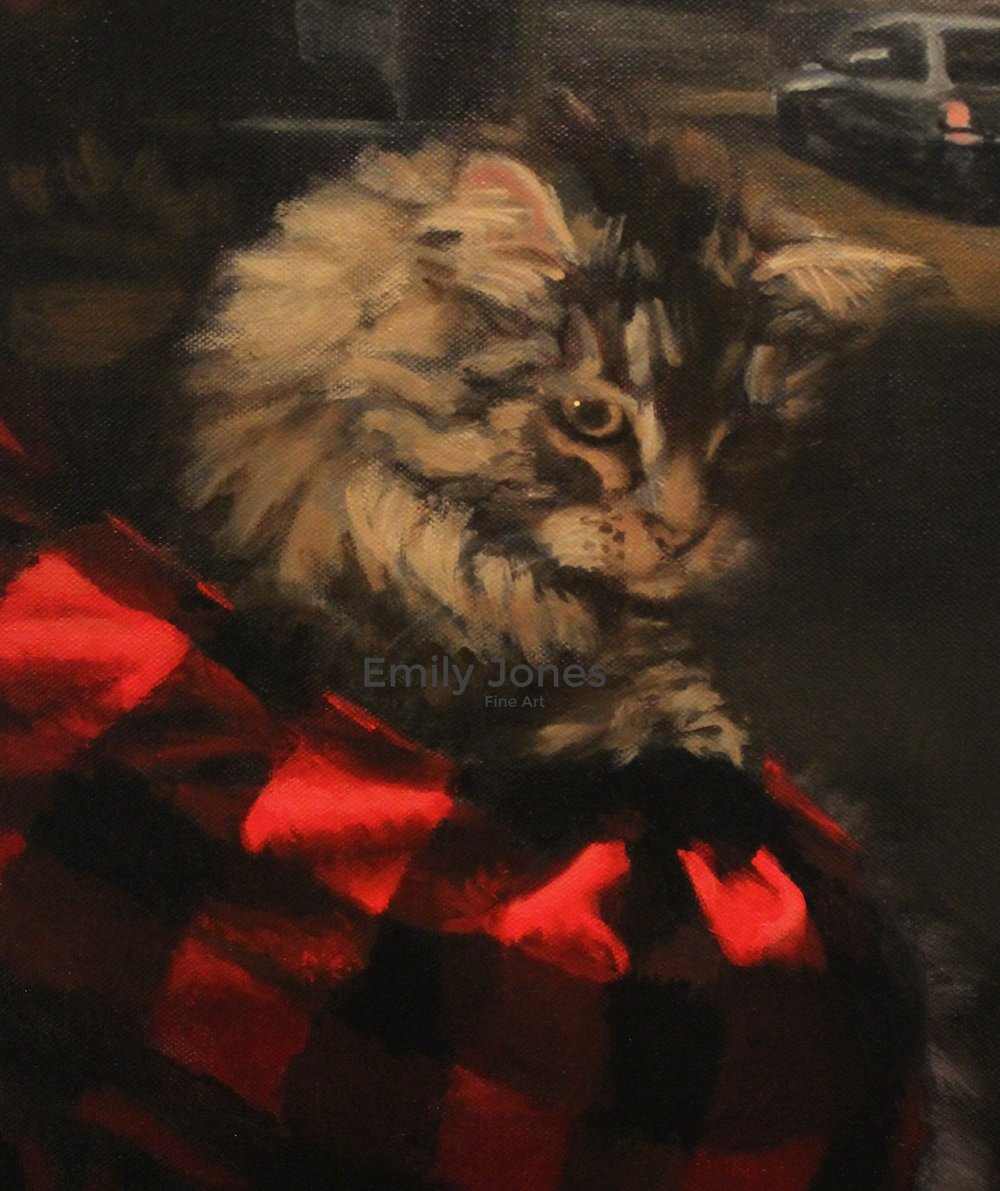 John Street, Kingston  (Detail) | 2013 | Oil on canvas * Finalist in the RACT Tasmanian Portraiture Prize 2013