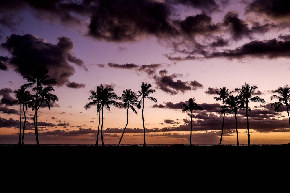 aloha sunshine photography for Jacky 81August 31, 2017.jpg