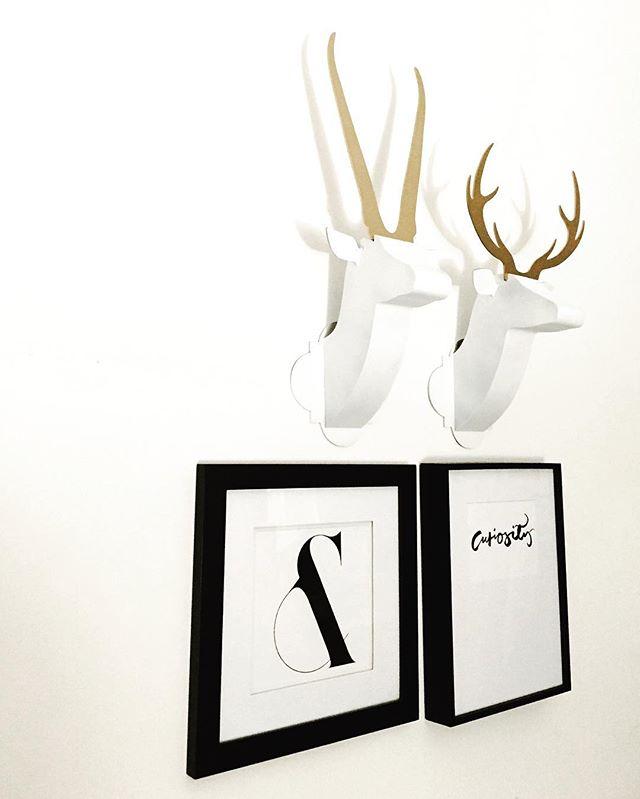 Classic Wild Duo + Gallery Wall Inspo #minimalist #modernart #blackandwhite #moderndesign #modernhome #wallart #walldecor #livingroom #livingroomdecor #interiorstyling #interiordesign #sculpture #colorblocking #art #gallerywall #gallerywallinspo #edgy #livingroom #livingroomdecor #sculpture #gifts #giftsforher #nurserydecor #kidsroomdecoration #animalhead #trophyhead #fauxanimalheads #interiordesigner #interiorandhome #instainterior #artpiece #livingspace #gifts