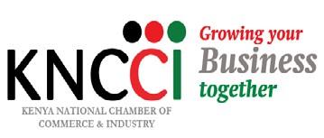 KNCCI Logo 1.jpg