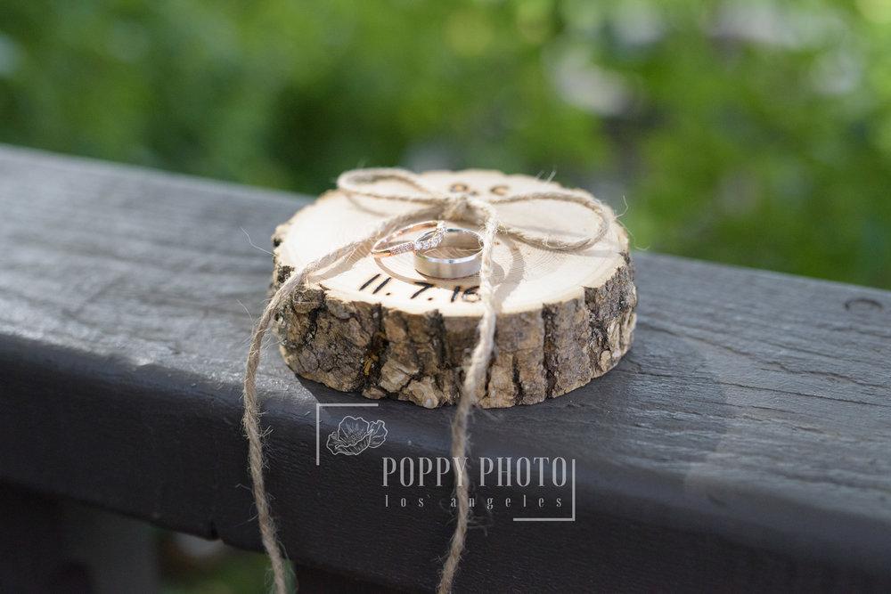 PoppyPhoto-22.jpg