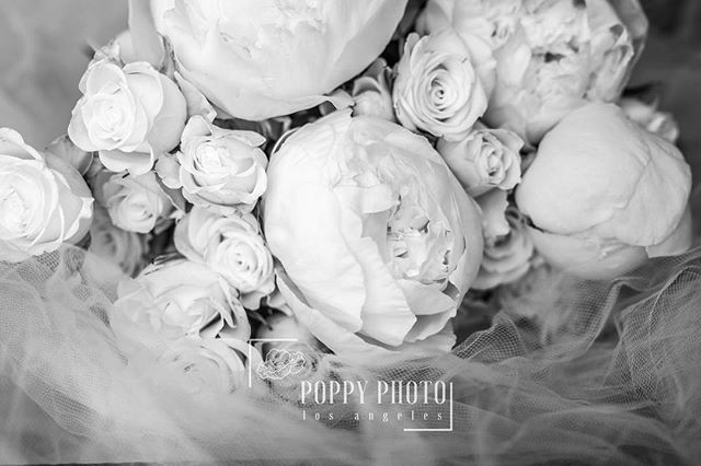 Peonies even look good in black and white ❤️ . 💐: @mfloralboutique 📷: @poppyphotola