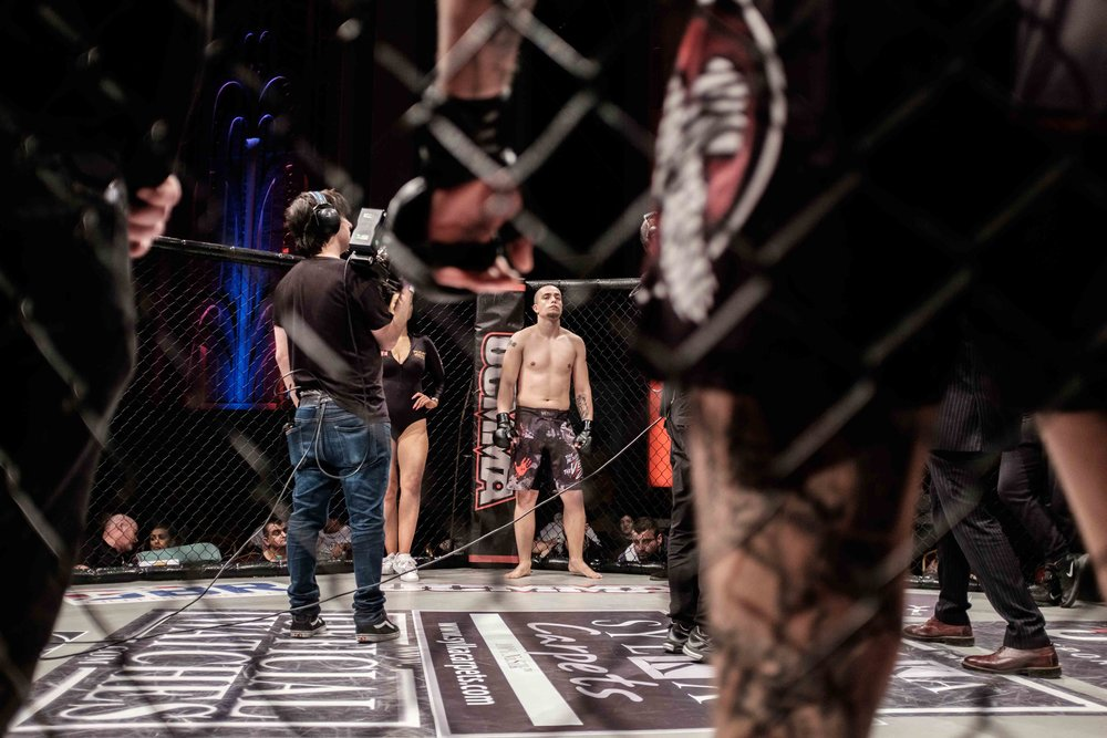 into the cage-8997.jpg