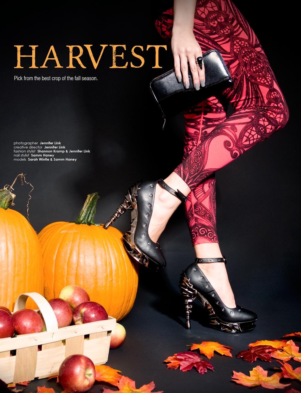 Aux30_Harvest.jpg