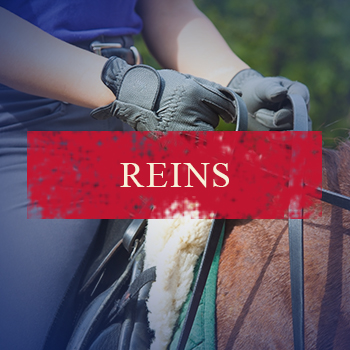 reins.jpg