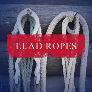 lead-ropes.jpg