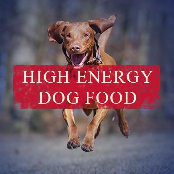 high-energy.jpg