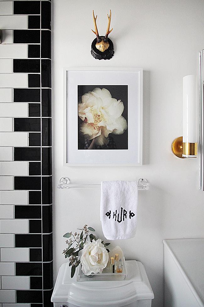 BathroomOverToilet_zps56a0eb86.jpg