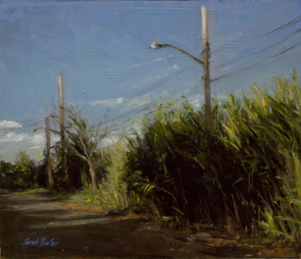 Long Grass on a Beach Road