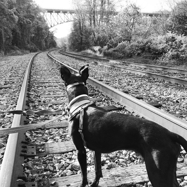 Cooper contemplates a hobo's life.
