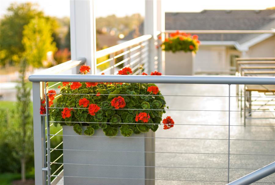 2009-Deck-Planters.jpg