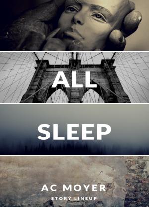 AllSleepCover.png
