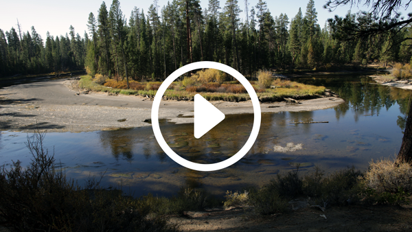 SAVING DESCHUTES PLAY BUTTON.png