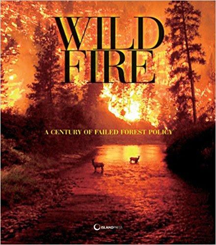 Wuerthner wildfire.jpg