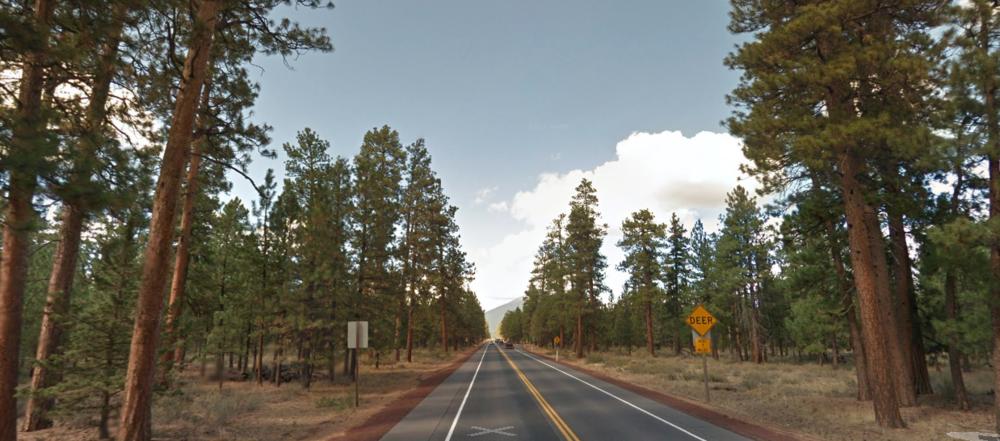 Highway 20 pondos.png