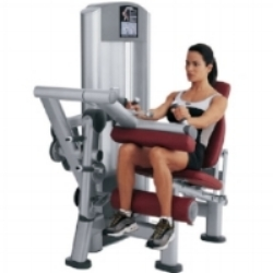 seated leg curl Maintaining Spine Health:  Machines To Avoid At the Gym