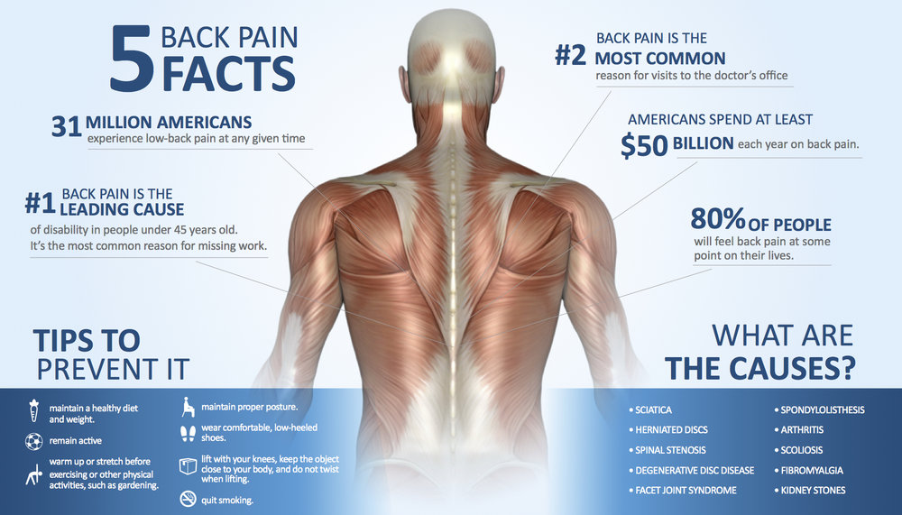 BackPainInfographic See A Physical Therapist FIRST For Your Back Pain!