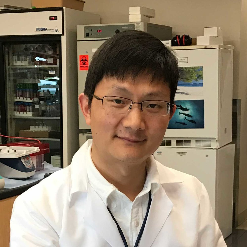 Nan Li, MD, PhD - Post doctoral researcher