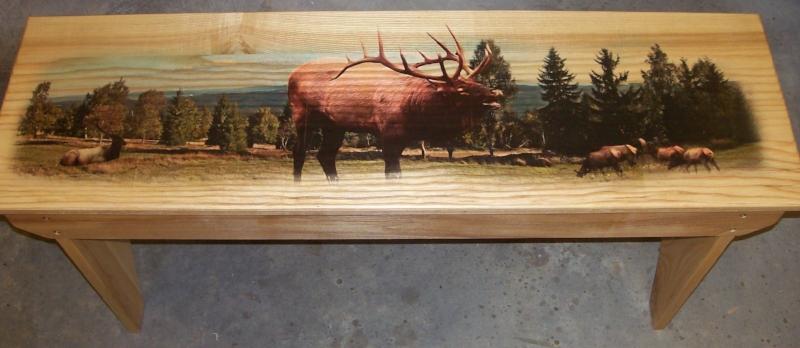 Elk Scene Bench for raffle at Elk Expo