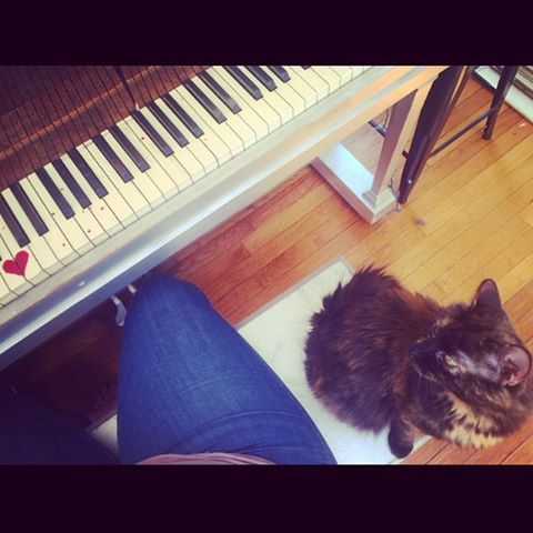 Chicken is my biggest fan. Oh how I have missed you 😽 -- I can be singing at rocking out so loudly, and she stays right by my side. I love that about her❤️🤓🙌🏻