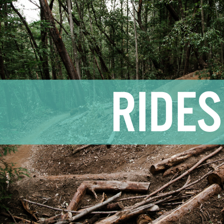 Rides.jpg