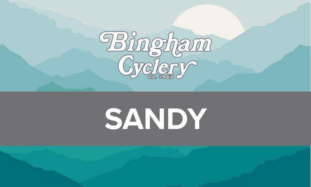 Sandy_Banner.jpg